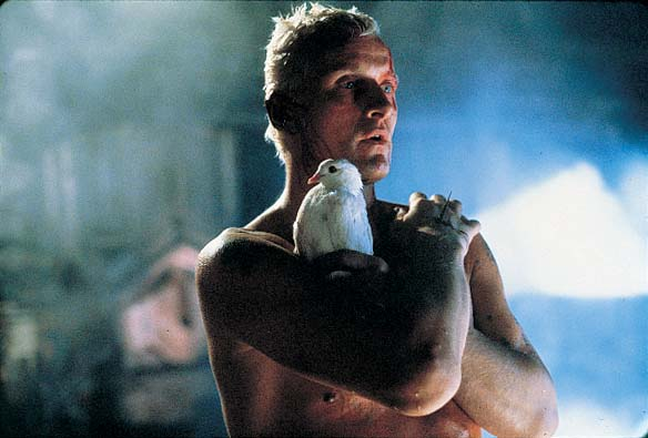Artigo: épico Blade Runner coloca em xeque a humanidade andróide
