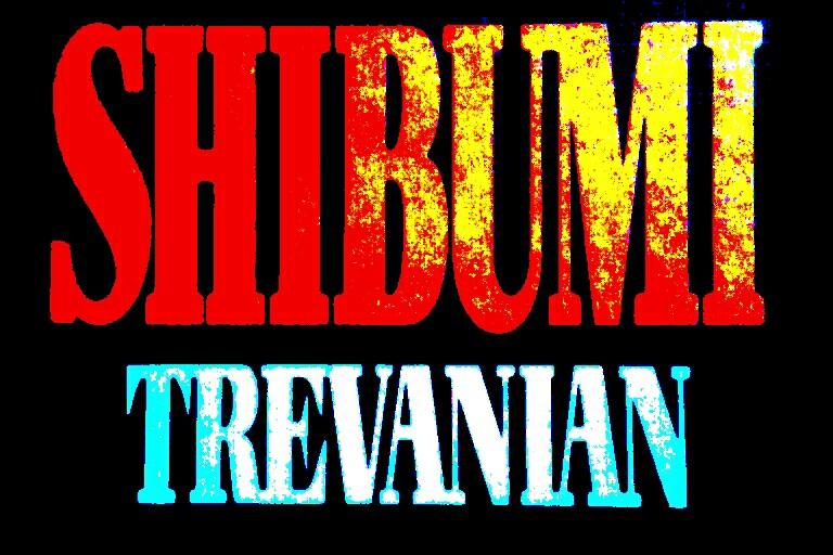 Crítica Livro | Shibumi