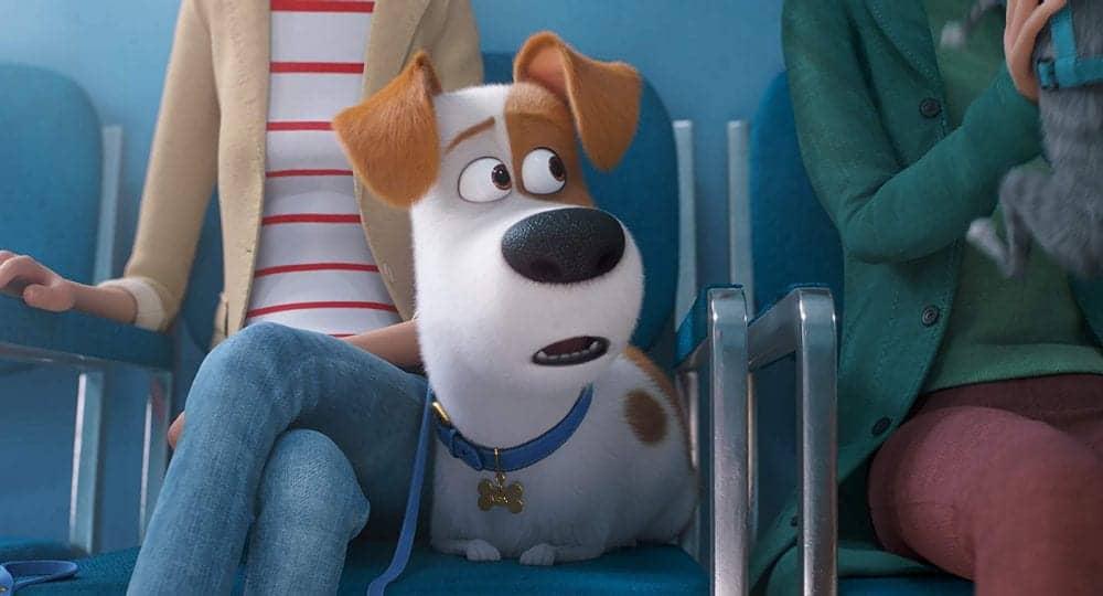 """Ingresso.com marca presença na pré-estreia de """"Pets: A Vida Secreta dos Bichos 2"""", da Universal Pictures e Illumination Entertainment"""