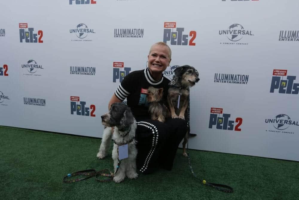 """""""Pets: A Vida Secreta dos Bichos 2"""" bate recorde mundial do Guinness"""