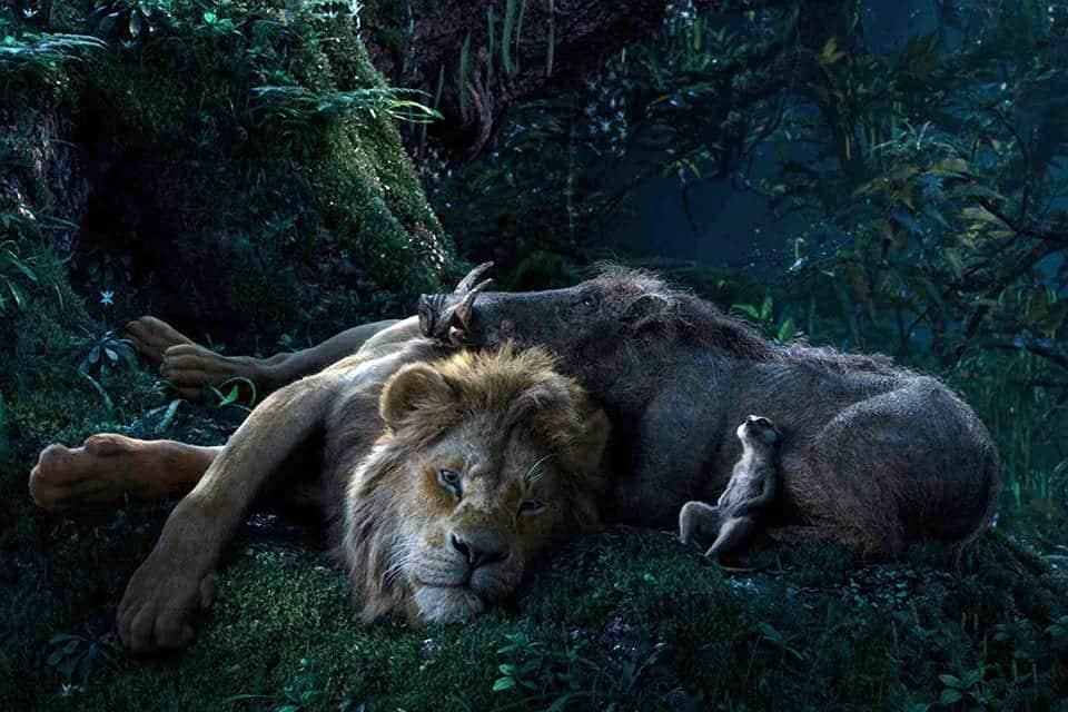 """Pré-venda online de """"O Rei Leão"""" é sucesso na Ingresso.com"""