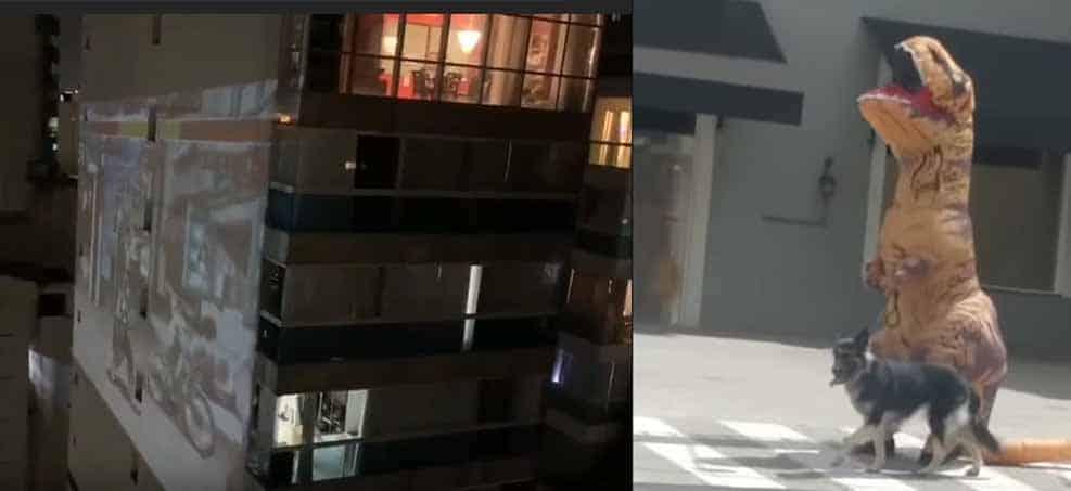 Morador projeta jogo de Street Fighter em prédio, e dino sai para passear com o pet durante quarentena