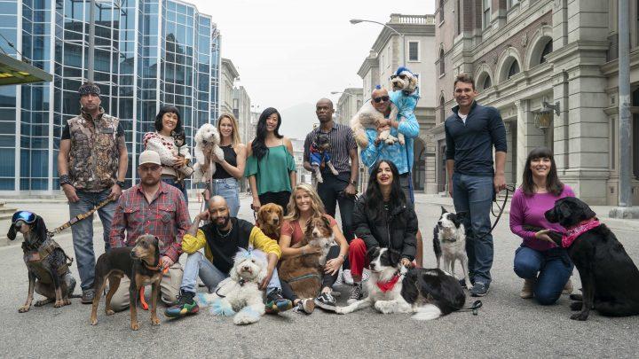 THE PACK, apresentada por Lindsey Vonn e sua cachorra Lucy, ganha primeiro trailer