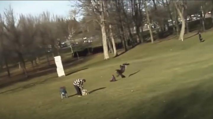 Notícias Impressionantes investiga imagens de águia capturando bebê neste sábado (01)